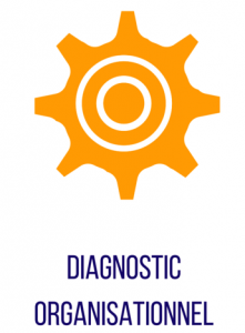diagnostic organisationnel - offre indeoconsulting